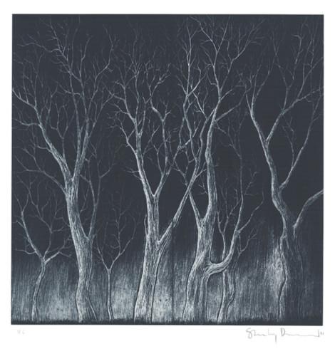 bad-woods-2