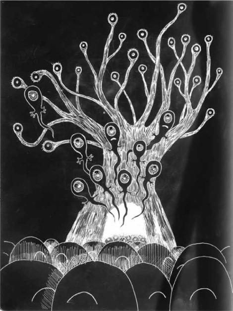 tree_seeds
